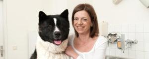 Chiropraxis für Hunde Frau Dr. Scheller bietet Chiropraktik auch im Hundezentrum Wien