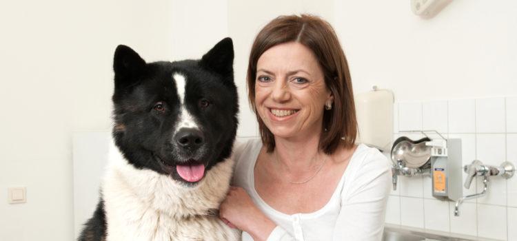 Chiropraktik für Hunde