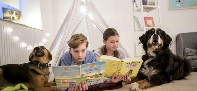 Lesen üben mit den Therapiehunden Hugo und Sam in entspannter Atmosphäre