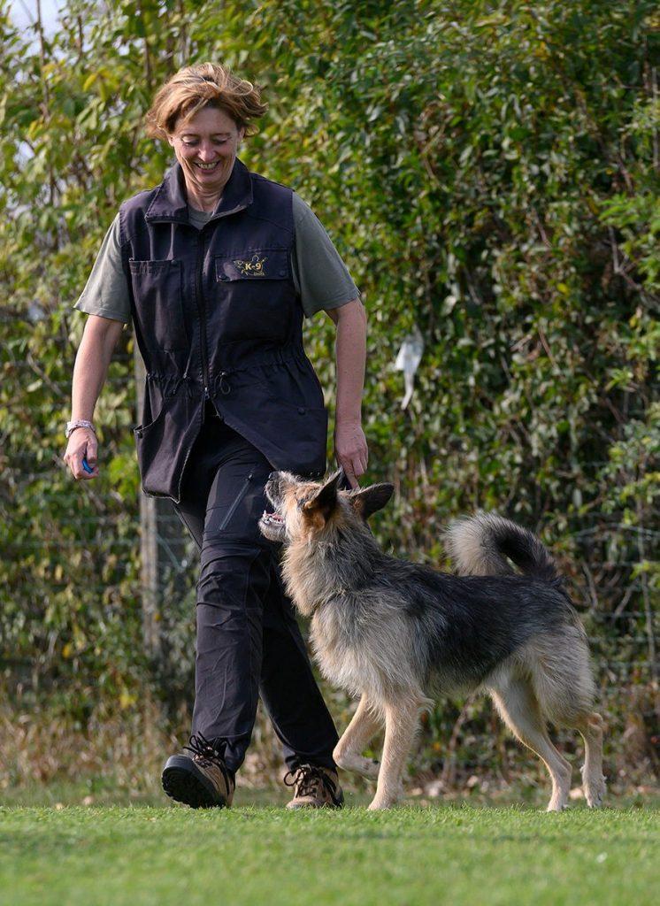 Unser Trainingssystem für entspannte und ausgeglichene Hunde. Erarbeitet von Mag. Michaela Marschall