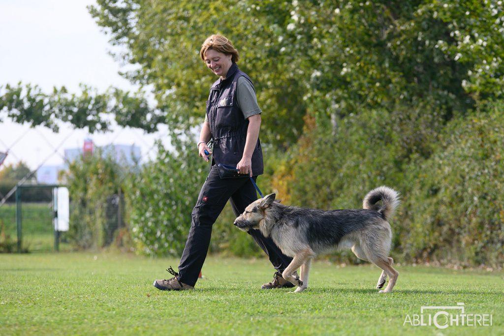 Project Canis mit Mag. Michaela Marschall -spezielles Einzeltrainig für jeden Hund