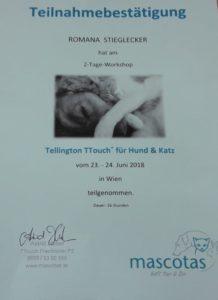 Tellington Touch TT Teilnahmebestätigung Romana Stieglecker