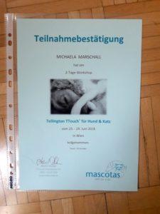 Ttouch Teilnahmebestätigung Michaela Marschall Project Canis